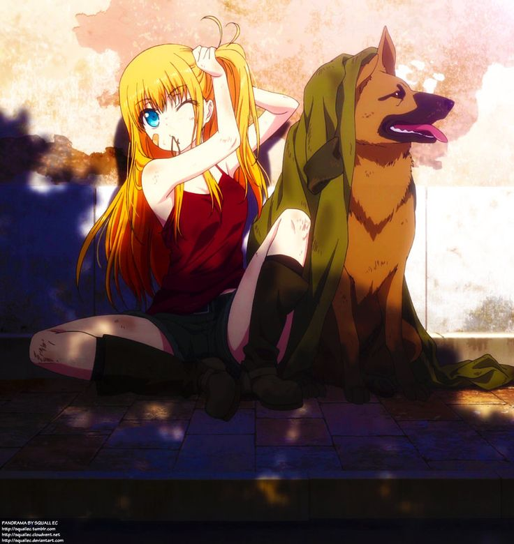Anime Batch Charlotte: 52 Best Images About Charlotte On Pinterest