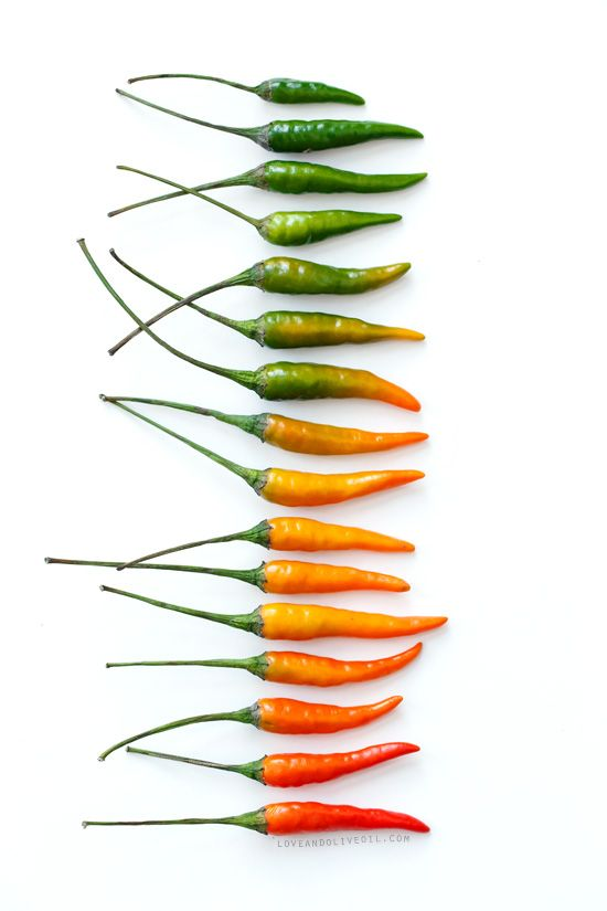 Hot chilli Gradient from Love & Olive oil
