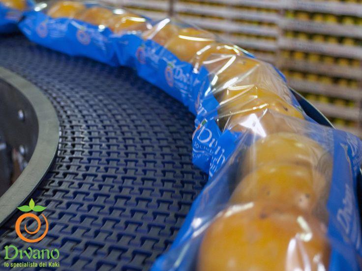 Linea di confezionamento kaki con flow pack. www.divanosrl.it