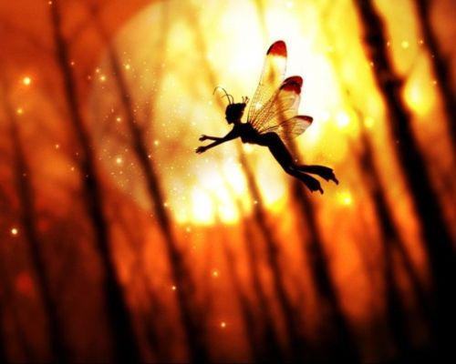 Newborn fairies sometimes, at a distance, mistake fireflies for their mommies. So embarrassing!
