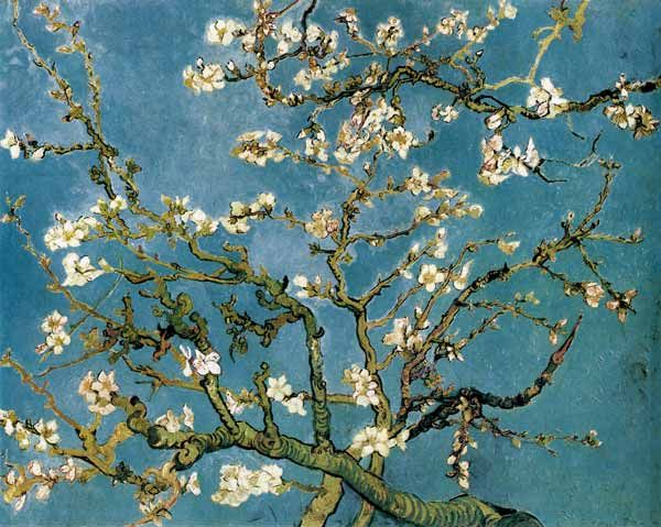 Das Kunstwerk Blühende Mandelbaumzweige - Vincent van Gogh liefern wir als Kunstdruck auf Leinwand, Poster, Dibondbild oder auf edelstem Büttenpapier. Sie bestimmen die Größen selbst.