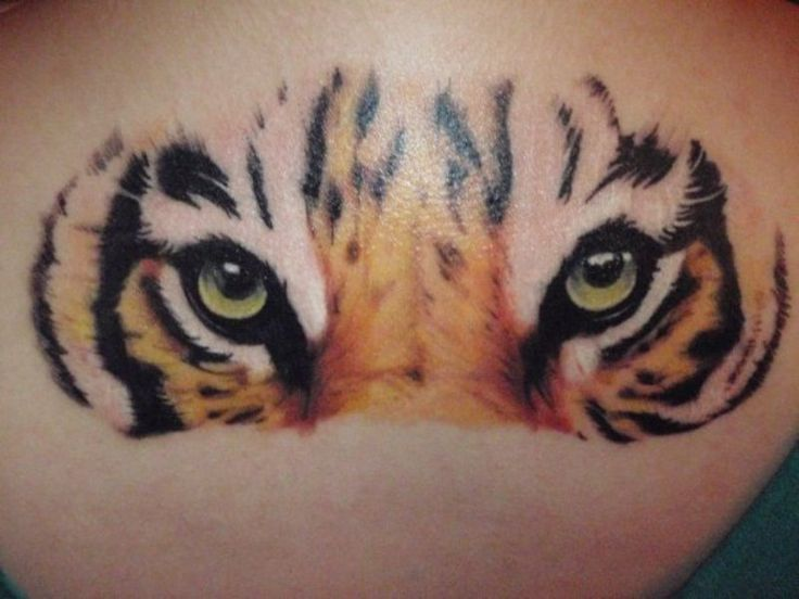 Tiger Eyes Tattoo Pictures at Checkoutmyink.com