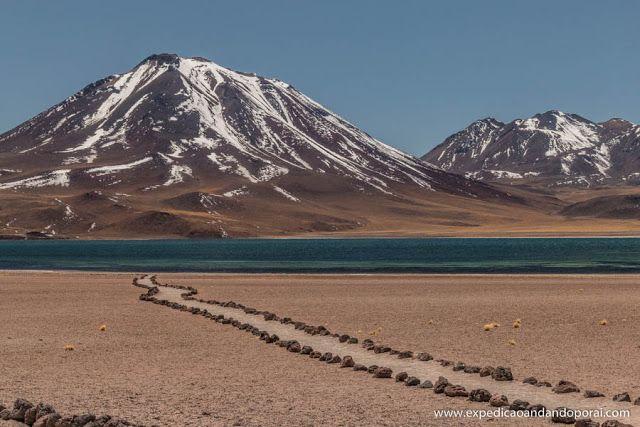 Lagunas Altiplanicas em San Pedro de Atacama