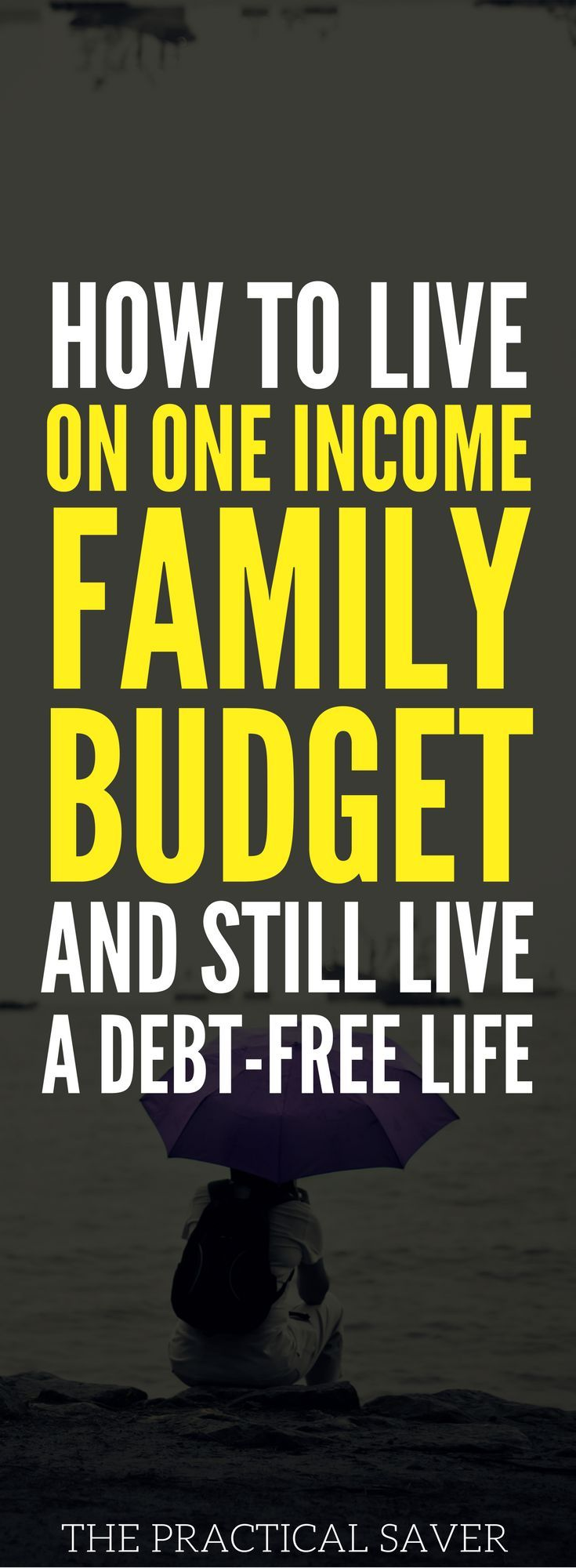 Can you be debt-free and live on one income? Yes, my family has achieved financial independence and will retire early even when we live on a single income. We don't have credit card debt. Learn the credit card tips, debt payoff management strategies, etc. to help you stay on budget. money management l how to pay off debt l investment ideas for beginners #investment #money #familybudget #personalfinance #FinancialFreedom