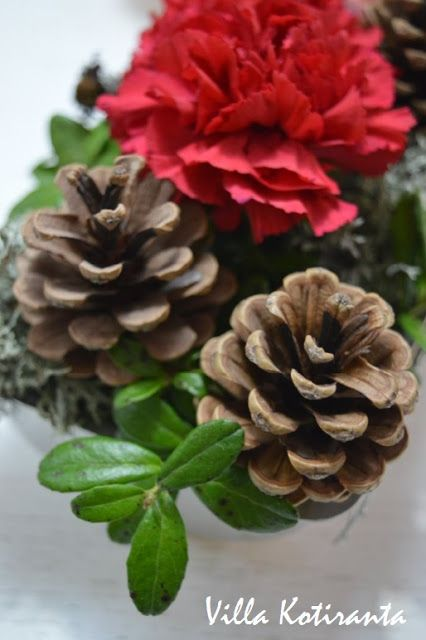 Jouluinen kukka-asetelma vanhaan kakkuvuokaan / Beautiful, Christmas flower arrangement, created into an old cake tin