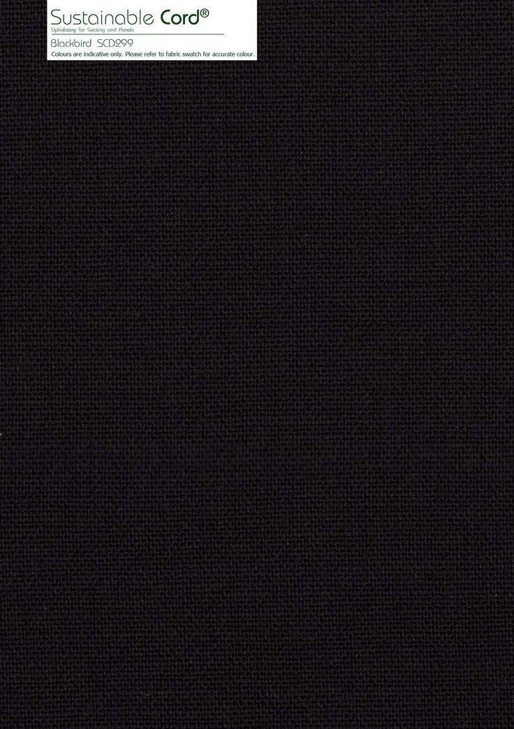 Blackbird SCD229