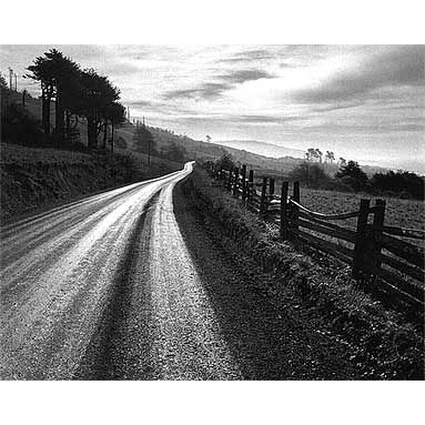 Ansel Adams: San Francisco California, Carmel California, Black White Photography, Northern California, Anseladam, Adam Roads, Rain Northern, Ansel Adams, Metropolitan Museums