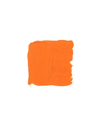 14 Best Orange Color For My Garden Nursery Images On