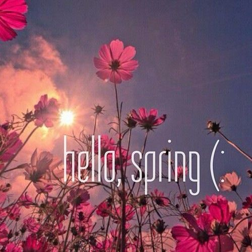 Hello spring  on We He...