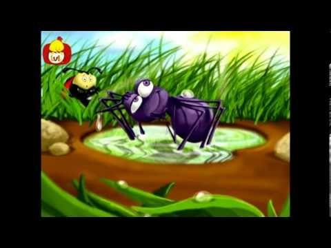 Küçük örümcek şarkısı - Popüler çocuk şarkıları Türkçe, Luli