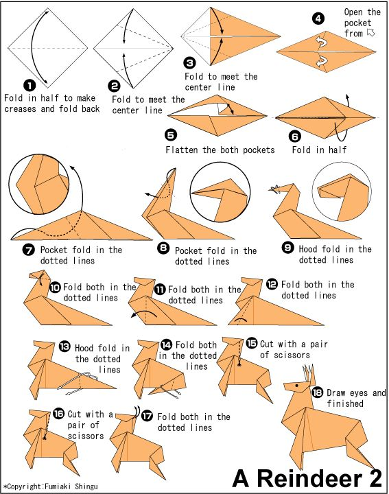 Origami Reindeer                                                                                                                                                                                 More