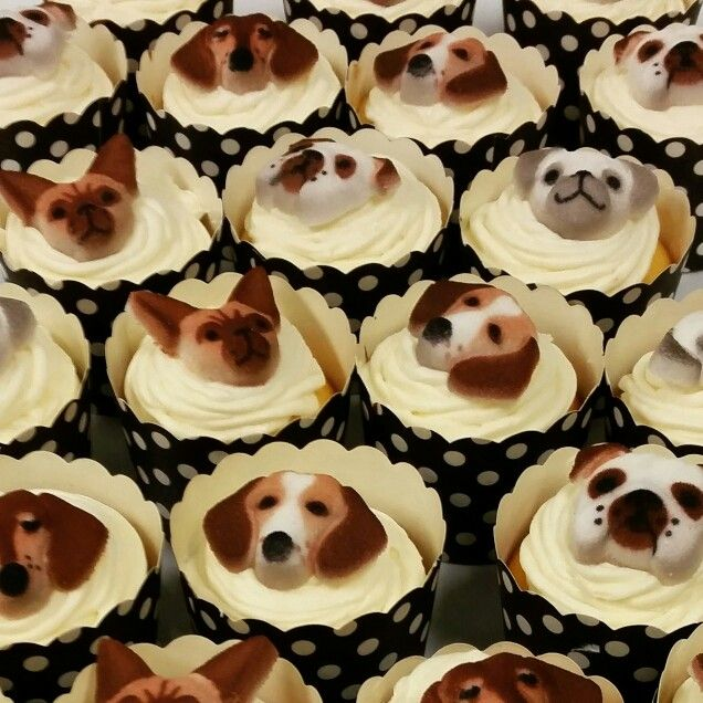 Doggy cupcakes for the RSPCA cupcake day