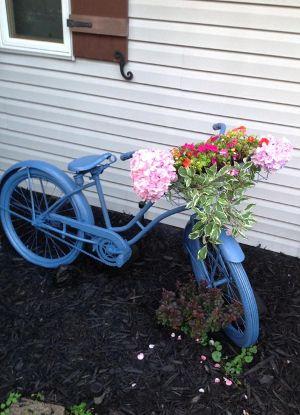 DIY Bike Planter Garden Craft   FaveCrafts.com