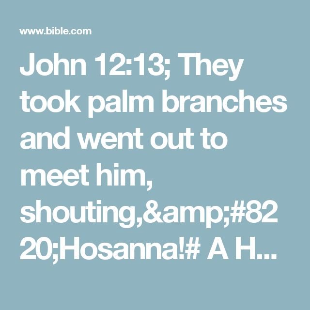 "John 12:13; They took palm branches and went out to meet him, shouting,""Hosanna!# A Hebrew expression meaning ""Save!"" which became an exclamation of praise""""Blessed is he who comes in the name of the Lord!""# Psalm 118:25,26""Blessed is the king of Israel!"""