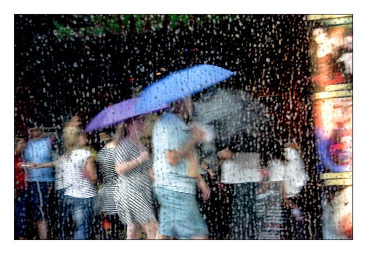 Rainy tribute