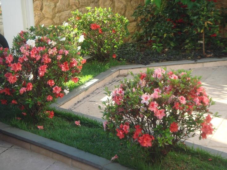 Azal ia casa pinterest jardins for 5 jardins de lucie