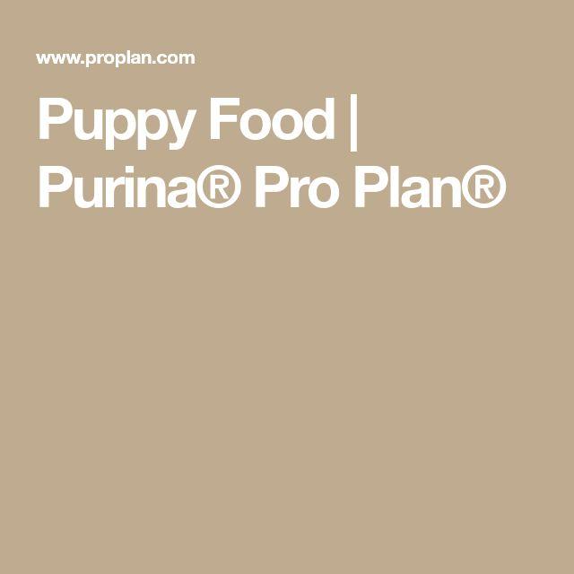 Puppy Food | Purina® Pro Plan®