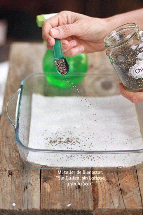 ¡Hola amigos! Hoy vamos a germinar semillas de chia. El proceso es muy simple y se realiza con materiales que tenemos en casa. En general las semillas exigen un tiempo de remojado, las semillas de …