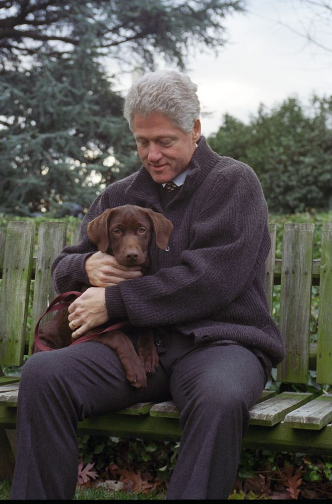 President Clinton with Buddy. Photograph from the William J. Clinton Presidential Library.