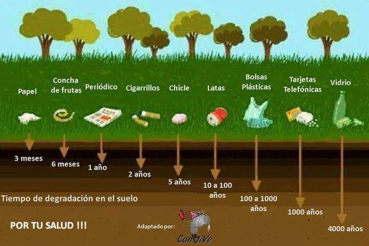 Día del cuidado del Medio Ambiente. Si quieres saber mucho más sobre marketing sostenible visita www.solerplanet.com