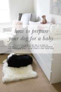 How to Prepare Your Dog for a Baby - The ultimate list of DO'S & DON'TS   www.prettyfluffy.com