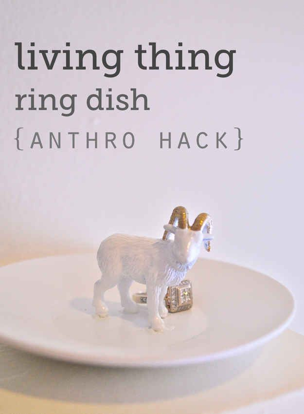 And this ring dish is the perfect alternative to buying someone actual jewelry.