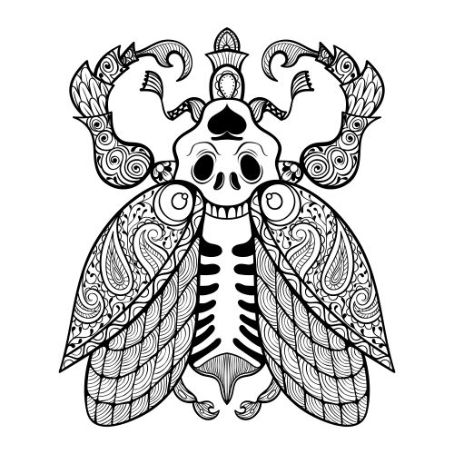 Scorpion Adult Coloring Page