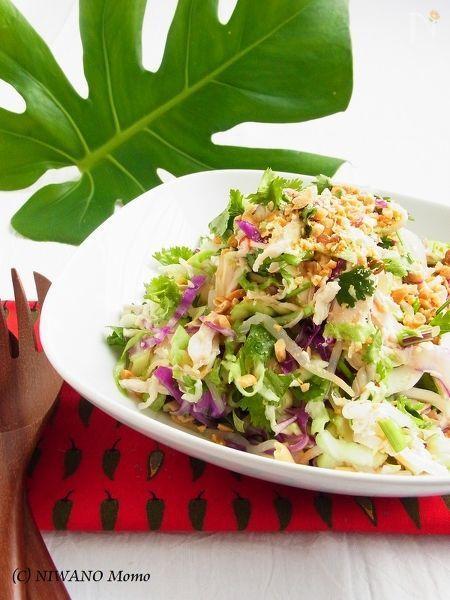 しっとりした鶏肉とたっぷりの野菜がわしわしいただけるカンボジア風のサラダ。あっさりなのに噛むほどに味わい深く、食欲をそそる味付け。飽きのこないおいしさにハマります♪