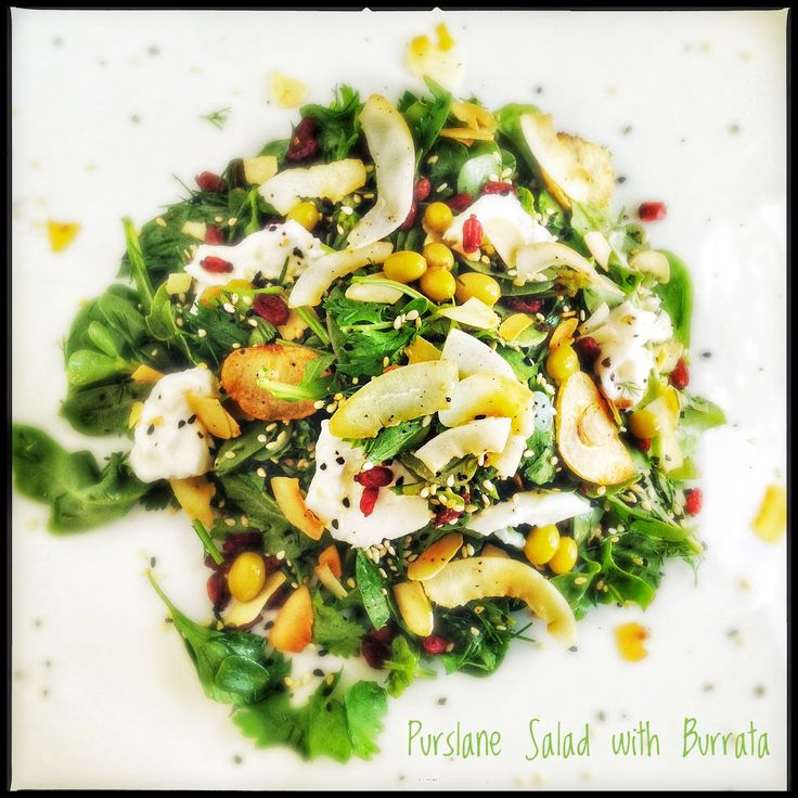 Purslane Salad with Burrata