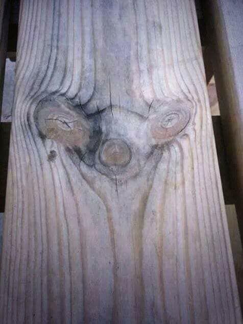 The pattern in this wood looks like Sid the Sloth from Ice Age