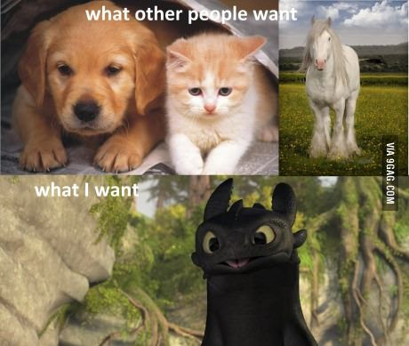 After watching HTTYD 2, your argument is invalid