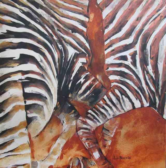 Zebra stripes at war