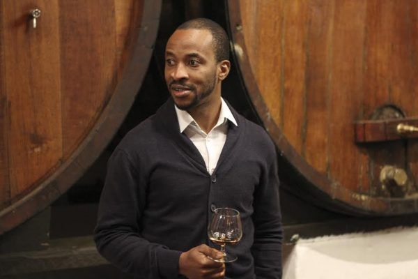 SA Sommeliers Discover Brandy Excellence at Backsberg Tasting