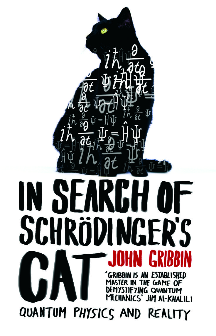 In Search Of Schrodinger's Cat | We Love This Book