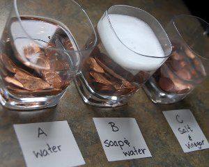 Penny for Your Thoughts Experiment: See how the pennies react to different solutions! from 27 Rainy Day Crafts and Cool Games for Kids