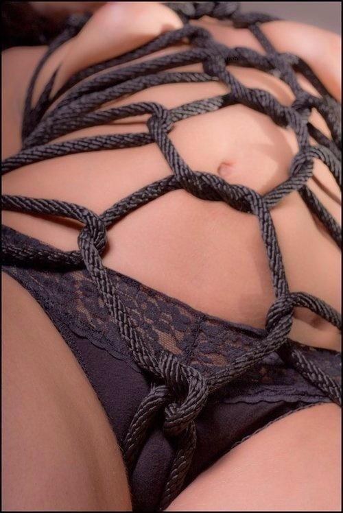 bondage and sex basic shibari