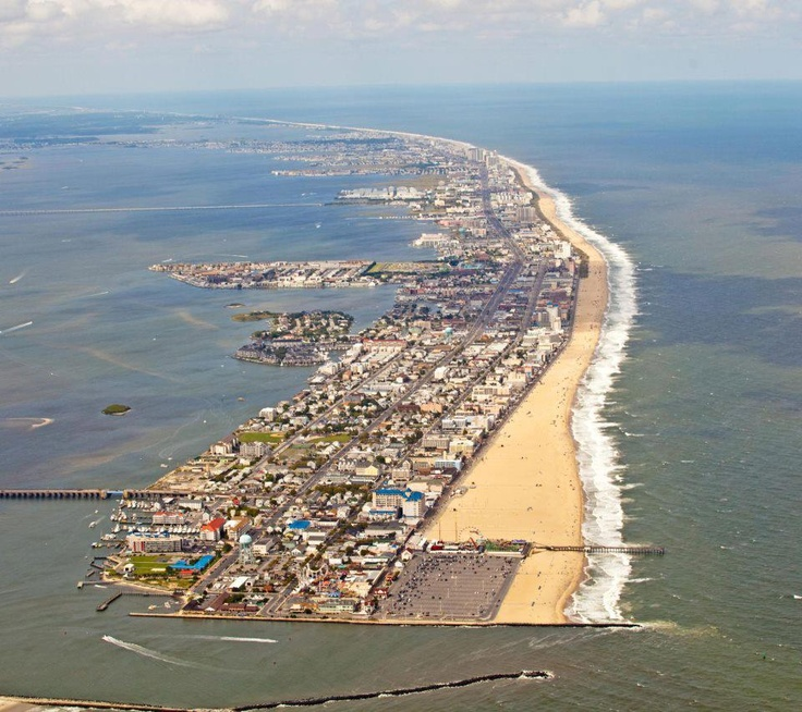 628 best images about ocean city maryland for Rehoboth beach fishing