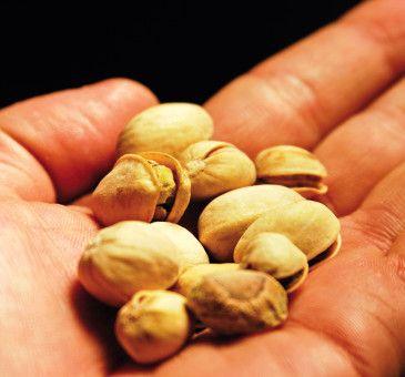 Cammina cammina e il pistacchio giunse in America  #pistacchio #pistachios #nuts #driedfruit #fruit #america #usa