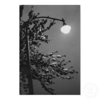 High light