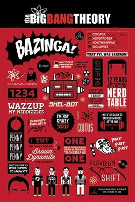 The Big Bang Theory Infographic Poster
