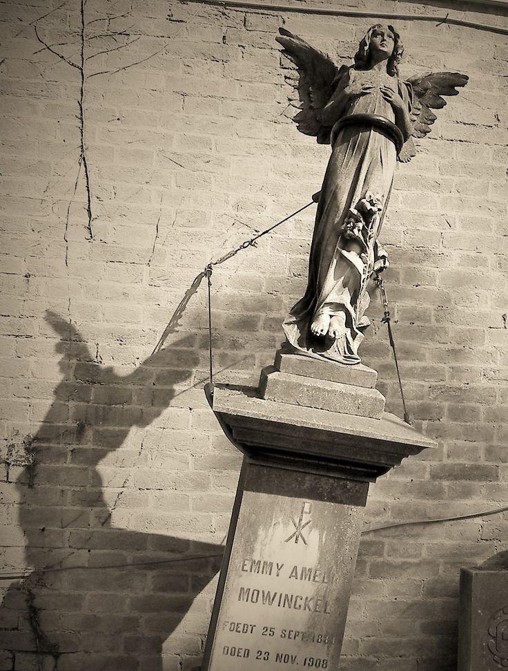 De Venetianen begraven hun doden op een afzonderlijk kerkhof-eiland, Cimitero San Michele. Hier kun je gemakkelijk een dag zoet brengen. Ook in de dood zijn katholieken, Grieks-orthodoxen, en protestanten hier gescheiden. In het protestantse deel vind ... - Venetië, Italië | Columbus Travel