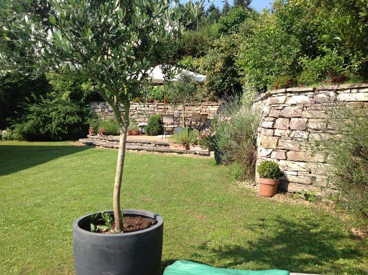 Beautiful Our mediterran garden