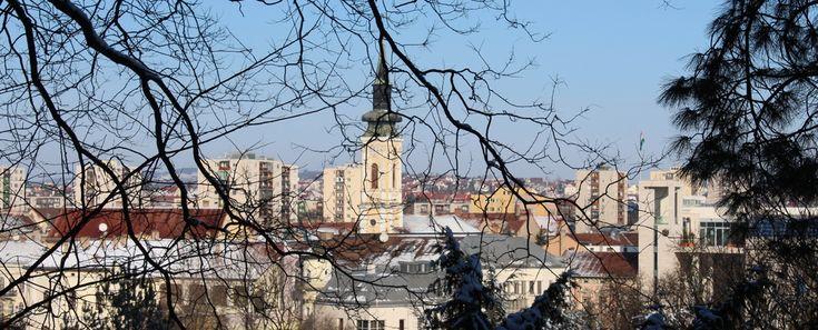 Három titok, ami miatt még a Kocsonya Farsang előtt el kell látogatni Miskolcra