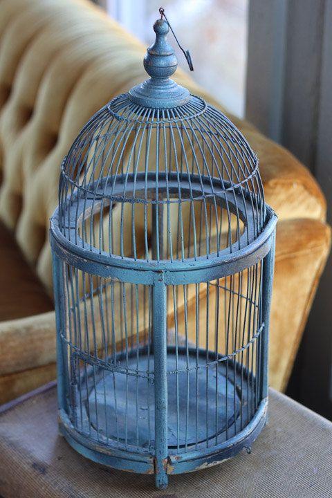 117 best Bird Cage Ideas Decor images on Pinterest