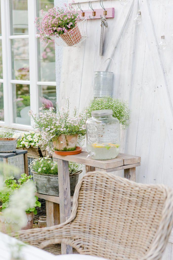 Holunderblutensirup Rezept Bepflanzung Hauswand Und Garten Terrasse