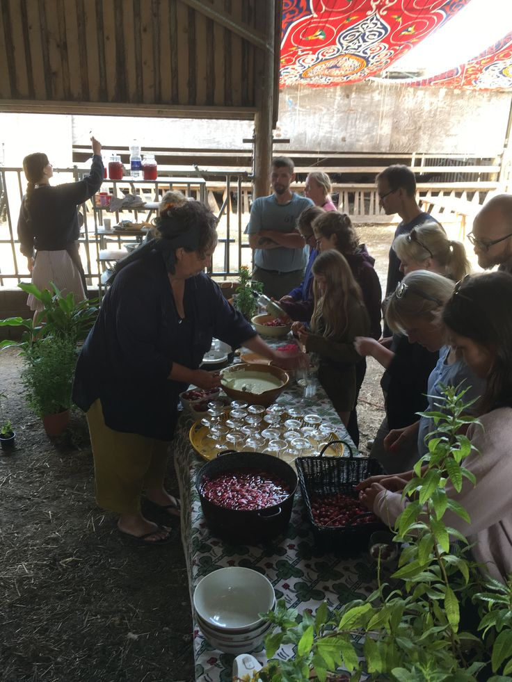 Strawberry Demonstration and tasting in the big barn summer 2016  www.fuglebjerggaard.dk