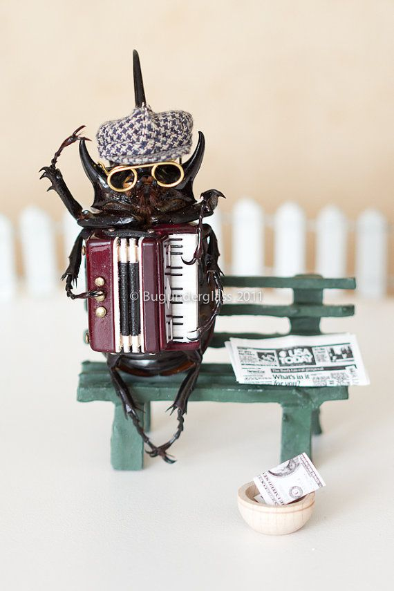 Insect Art Print Beetle Playing Accordion 5x7 by BugUnderGlass, $11.00
