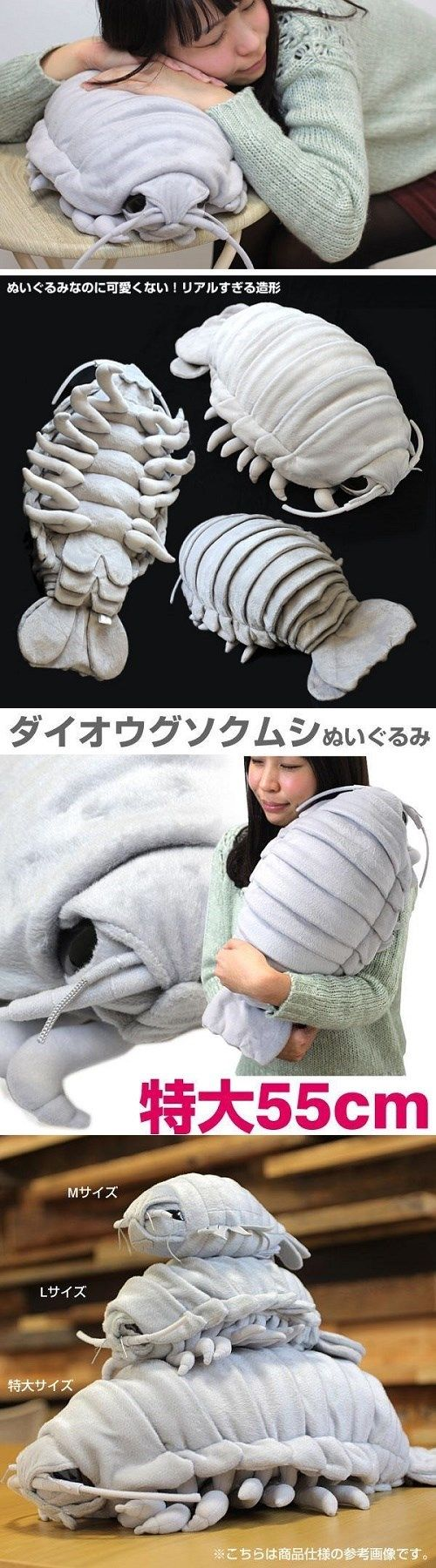 Why, Japan? of the Day: Giant Isopod Plushie!
