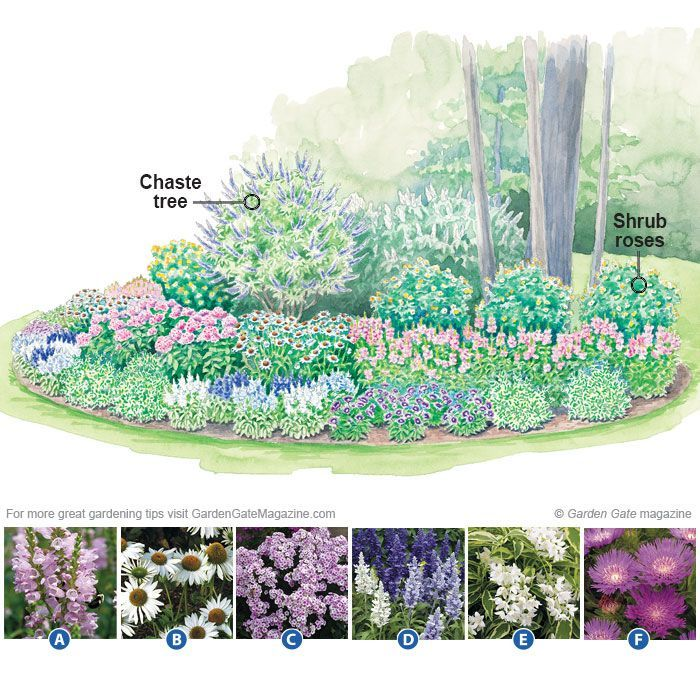 Best 25 full sun garden ideas on pinterest sun garden for Low maintenance flower bed plans