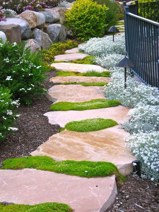 mousse irlandaise et dalles en pierre naturelle